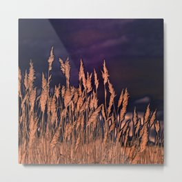 Abstract beach grass Metal Print