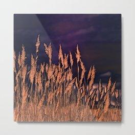 Abstract beach grass Metal Print