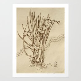 Narcissus and Echo  Art Print