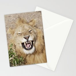 The laughing lion Stationery Cards