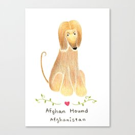 A is for Afghan Hound Canvas Print