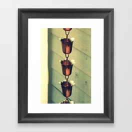Rain Catcher  Framed Art Print