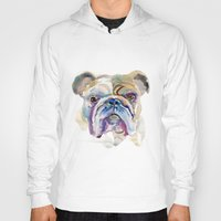 bulldog Hoodies featuring Bulldog by coconuttowers