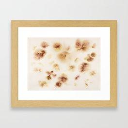 Gladiolas, Come Into Bloom Framed Art Print