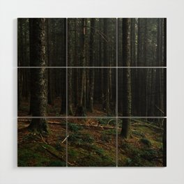 Gorge Woods Wood Wall Art