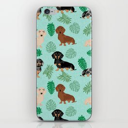 dachshund summer tropical monstera palms dog breed pure breed pets iPhone Skin