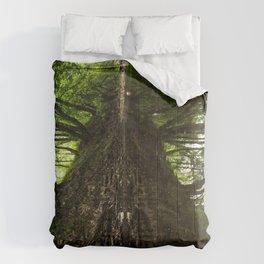 Creekside Reflection Comforters