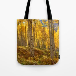 Autumn Aspen Forest Aspen Colorado Tote Bag