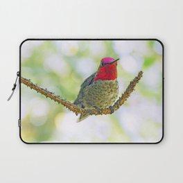 Anna's Hummingbird on a Twig Laptop Sleeve