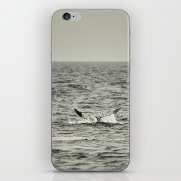 Whale of a Tale iPhone Skin
