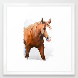 Horse Framed Art Print