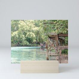 Jungle vibes   Florida Blue Springs State Park, USA Mini Art Print