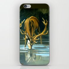 Red Stag Drinking iPhone & iPod Skin
