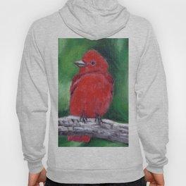 Red Bird Summer Tanager Hoody