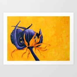 Calendula officinalis - Marigold Art Print