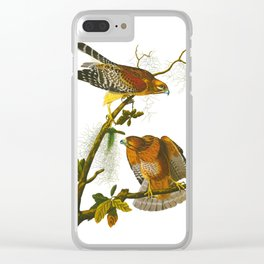 Red-shouldered Hawk Clear iPhone Case