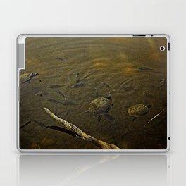 Beaver Lake Gathering Laptop & iPad Skin