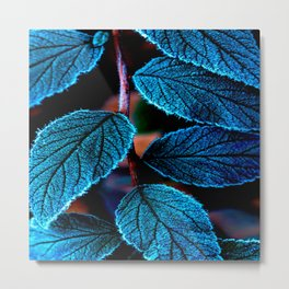 Peacock Blue Leaves Nature Background #decor #society6 #buyart Metal Print