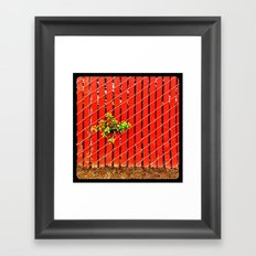 Peeking through. Framed Art Print