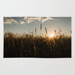 Wyoming Wheat Field Sunset Rug