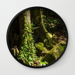 Sunlit Rainforest Wall Clock
