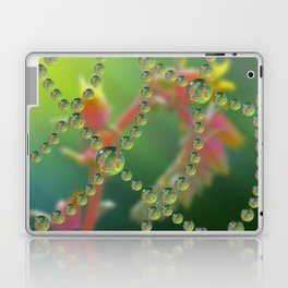 Echevaria Web Drops Laptop & iPad Skin