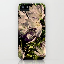 Krokus iPhone Case