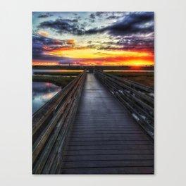 Color Exposion Canvas Print