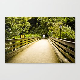 """The Bridge"" Canvas Print"