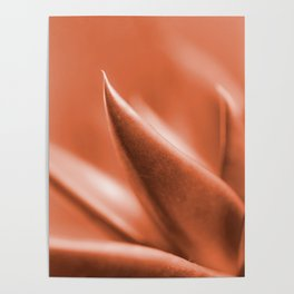 Succulent Leaves Coral Color #decor #society6 #buyart Poster