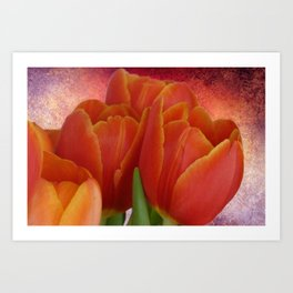 Tulip with Textured Background Art Print