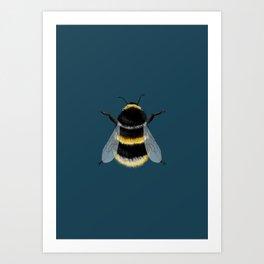 Little Bumblebee Art Print