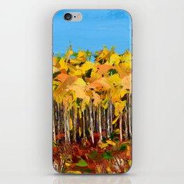 Wisconsin woods iPhone Skin