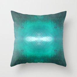 Silver Springs Throw Pillow