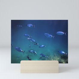 Fish School Underwater. Fishes underwater background. Mini Art Print