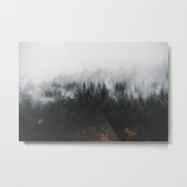 PINE TREES SURROUNDED BY FOGS Metal Print