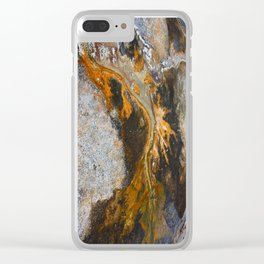 Earth's Artwork Clear iPhone Case
