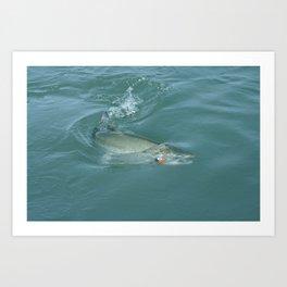 Alaskan Salmon on the line Art Print