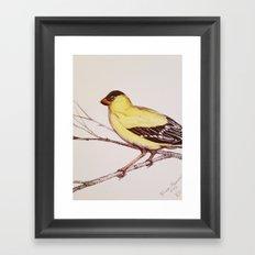 I Call him Mellow Yellow Framed Art Print