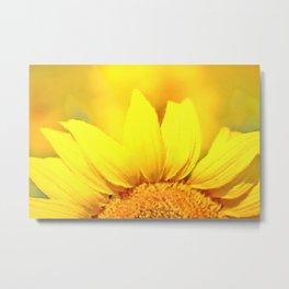 Sunflower love Flowers Flower Summer floral Metal Print