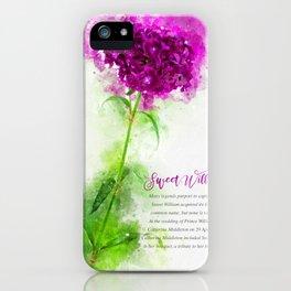 Sweet William iPhone Case