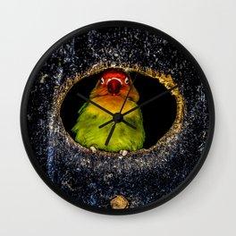 Rainbow Bird Wall Clock