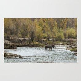 Moose Mid-Stream - Grand Tetons Rug