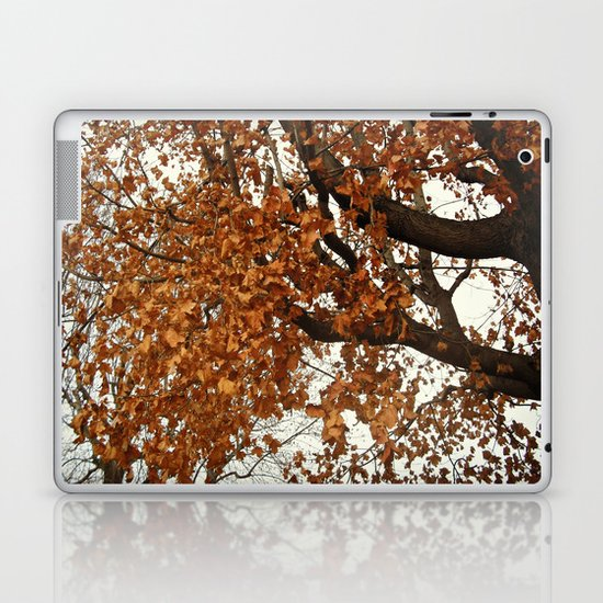 Colors Thriving As The Leaves Are Dying Laptop & iPad Skin