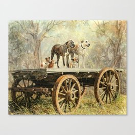 Country Dogs Canvas Print