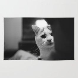 Cat peeking over owner's shoulder - black & white Rug