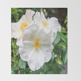 Camellia Bloom Flower Throw Blanket