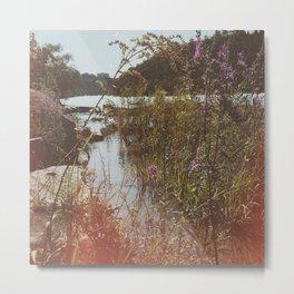 Summer at Niagara River Metal Print