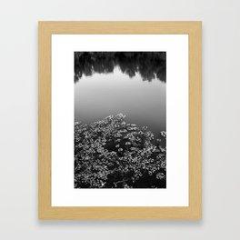 The Pond, Montgomery, Texas, 2013 Framed Art Print