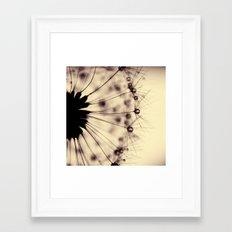 dandelion - droplets of mocha Framed Art Print
